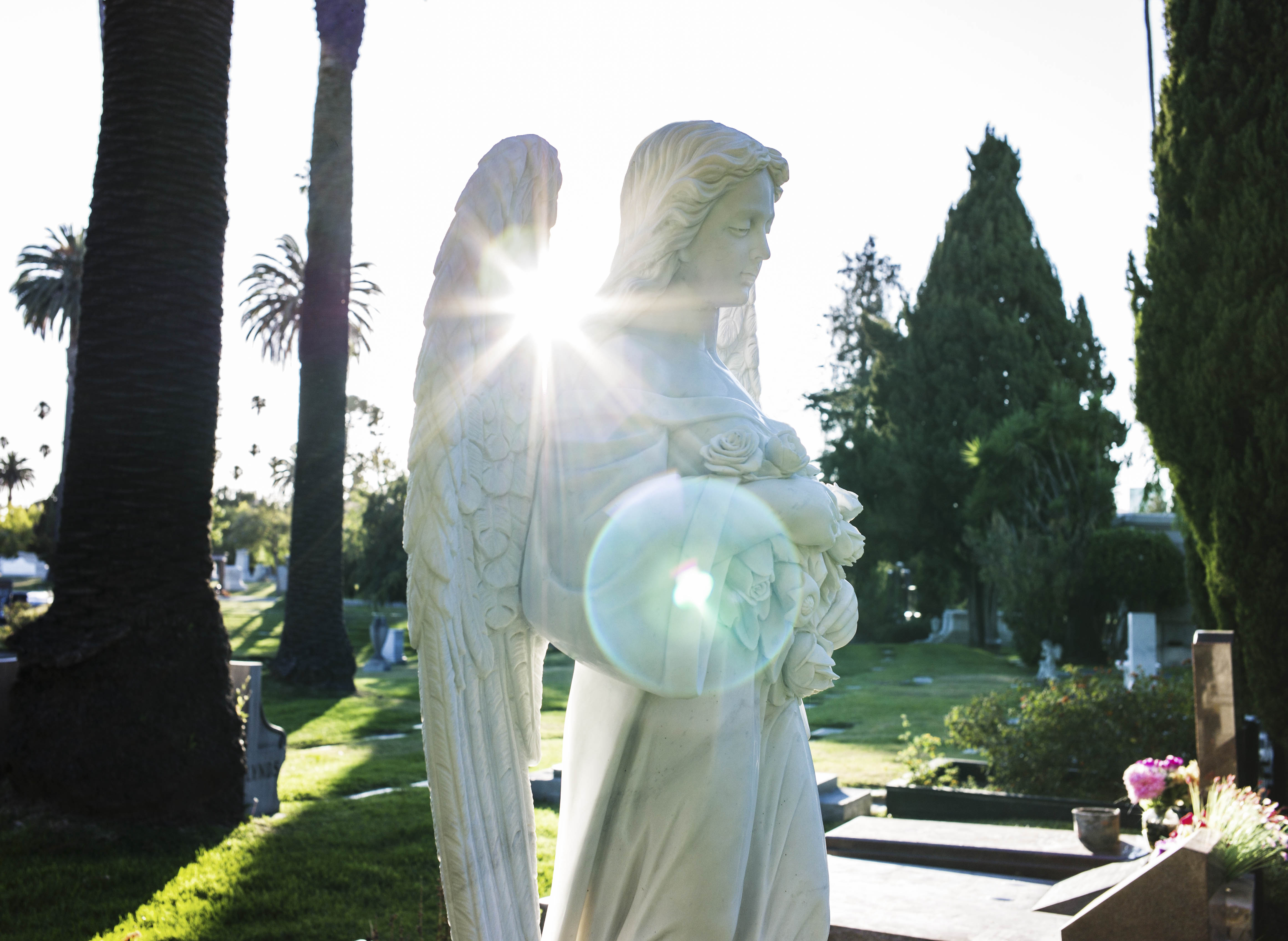 120619-REshel_Hollywood Forever-cemetery0005-170-Edit-3-Edit